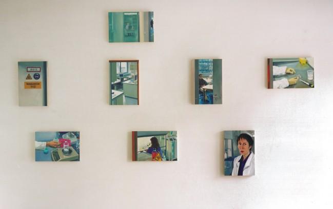 gezählt, gewogen … Installationsansicht aller Malereien